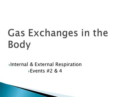  Internal & External Respiration  Events #2 & 4.