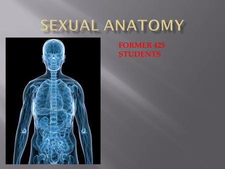 Sexual Anatomy FORMER 425 STUDENTS.