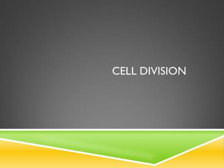 CELL DIVISION.  When cell divides forming 2 new cells  Prokaryotic cells  Called Binary Fission  Split into 2 parts  Eukaryotic cells  Called Mitosis.