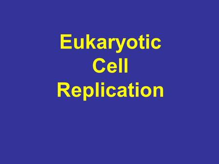 Eukaryotic Cell Replication. The Eukaryotic Genome The genomes of eukaryotes are much more complex than those of prokaryotes. Unlike the genomes of prokaryotes.