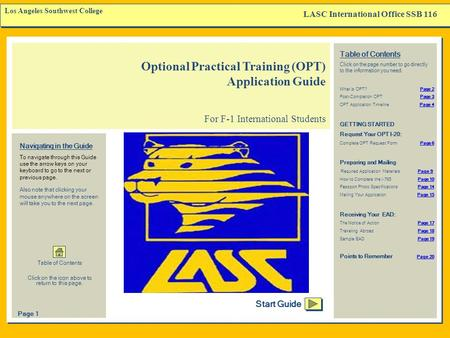 Optional Practical Training (OPT) Application Guide