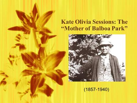 "Kate Olivia Sessions: The ""Mother of Balboa Park"" (1857-1940)"