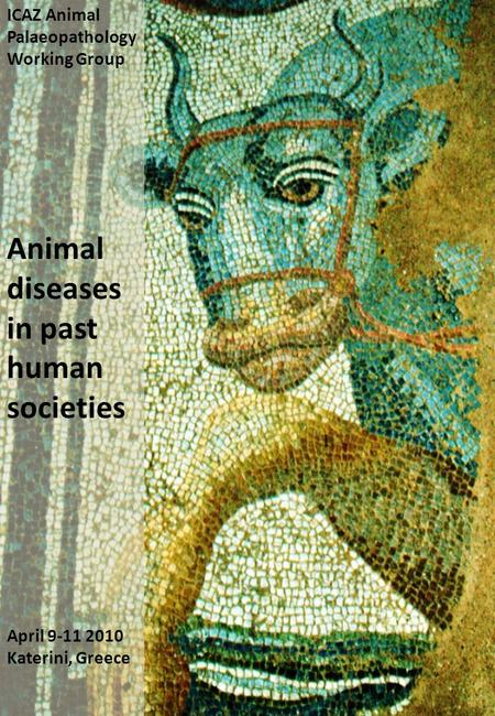 ICAZ Animal Palaeopathology Working Group Animal diseases in past human societies April 9-11 2010 Katerini, Greece.