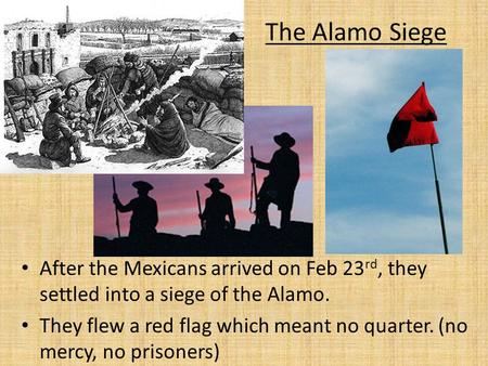 The Alamo Siege After the Mexicans arrived on Feb 23rd, they settled into a siege of the Alamo. They flew a red flag which meant no quarter. (no mercy,
