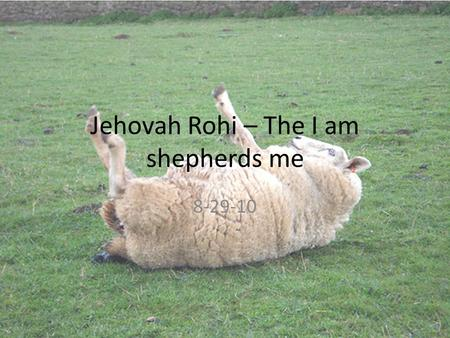 Jehovah Rohi – The I am shepherds me 8-29-10. Where have we been so far? Our Creator, wirerer, and giver of creational gifts? – El Elohym Is the Most.
