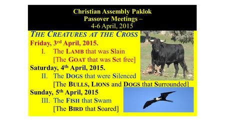 Christian Assembly Paklok Passover Meetings – 4-6 April, 2015 T HE C REATURES AT THE C ROSS Friday, 3 rd April, 2015. I. The L AMB that was Slain [The.