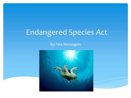 Endangered Species Act By: Tara Manoogian.  Draft year: Signed by Richard Nixon December 28, 1973  National  Amendment years: 1973, 1982, 1985, 1988.