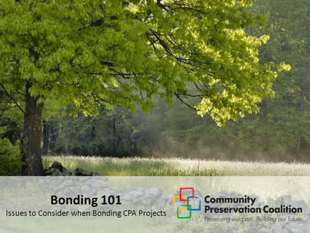 Bonding 101 Issues to Consider when Bonding CPA Projects.