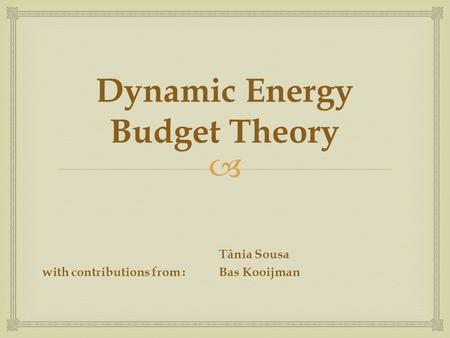  Dynamic Energy Budget Theory Tânia Sousa with contributions from :Bas Kooijman.