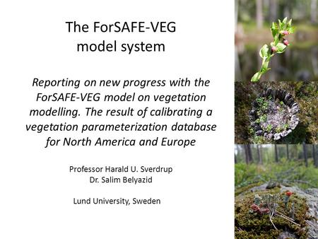 The ForSAFE-VEG model system Reporting on new progress with the ForSAFE-VEG model on vegetation modelling. The result of calibrating a vegetation parameterization.