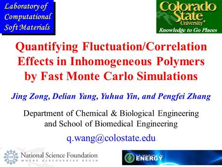 Quantifying Fluctuation/Correlation Effects in Inhomogeneous Polymers by Fast Monte Carlo Simulations Department of Chemical & Biological Engineering and.