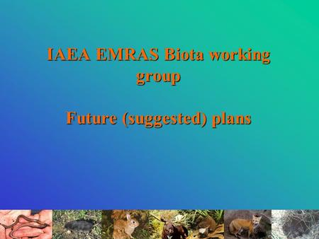 IAEA EMRAS Biota working group Future (suggested) plans.