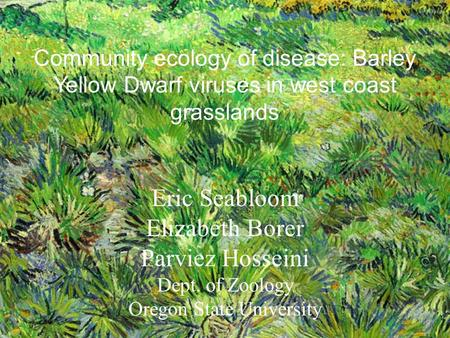 Community ecology of disease: Barley Yellow Dwarf viruses in west coast grasslands Eric Seabloom Elizabeth Borer Parviez Hosseini Dept. of Zoology Oregon.
