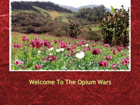 Welcome To The Opium <strong>Wars</strong>. From This… To This… The Opium <strong>Wars</strong> Some Quick Facts 2 <strong>wars</strong> total 1st <strong>war</strong>: 1839 - 1842 <strong>2nd</strong> <strong>war</strong>: 1856 - 1860 Both <strong>wars</strong> primarily.
