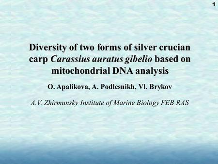 Diversity of two forms of silver crucian carp Carassius auratus gibelio based on mitochondrial DNA analysis Diversity of two forms of silver crucian carp.