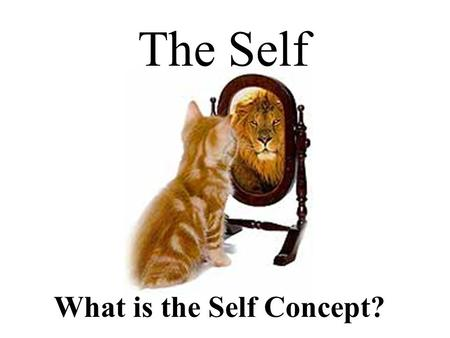 What is the Self Concept? The Self.  The ideas, attitudes, and perceptions people have about themselves  The image one has of oneself.  self-concept.