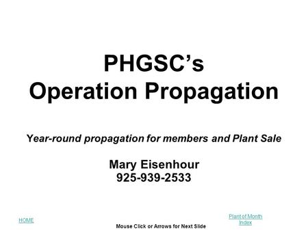 HOME Plant of Month Index Mouse Click or Arrows for Next Slide PHGSC's Operation Propagation Year-round propagation for members and Plant Sale Mary Eisenhour.