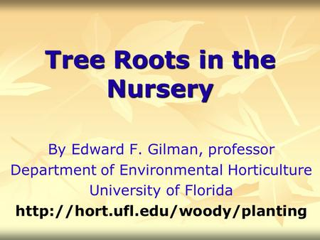 Tree Roots in the Nursery By Edward F. Gilman, professor Department of Environmental Horticulture University of Florida