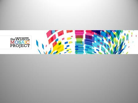 What is the Mosaic Project? The Mosaic Project supports the University's ongoing commitment to strengthen diversity, foster inclusion, and promote social.