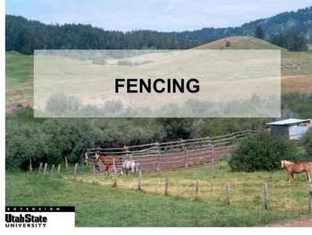 FENCING. What kind of fence do I want? USU, Logan, UT.