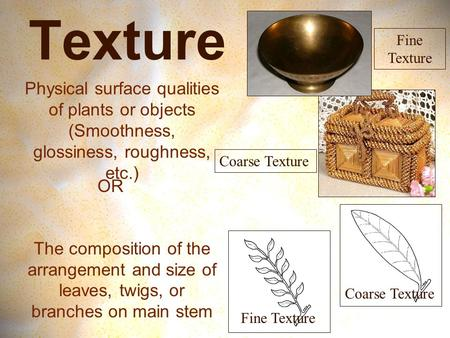 Texture Physical surface qualities of plants or objects (Smoothness, glossiness, roughness, etc.) The composition of the arrangement and size of leaves,