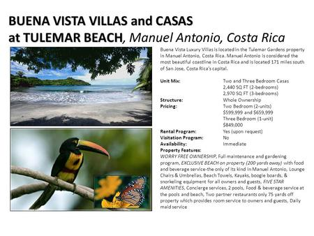 Buena Vista Luxury Villas is located in the Tulemar Gardens property in Manuel Antonio, Costa Rica. Manuel Antonio is considered the most beautiful coastline.