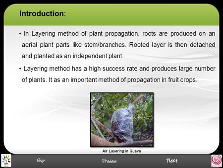 Introduction: In Layering method of plant propagation, roots are produced on an aerial plant parts like stem/branches. Rooted layer is then detached and.