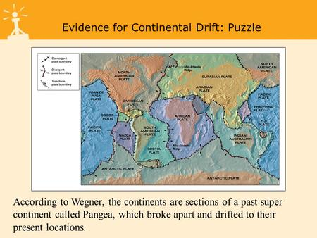 Figure 1-8a Tectonic Plates Evidence for Continental Drift: Puzzle According to Wegner, the continents are sections of a past super continent called Pangea,