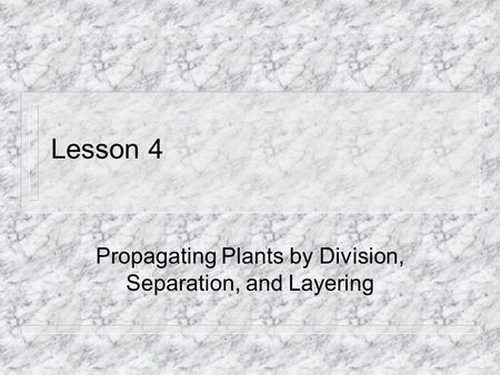 Lesson 4 Propagating Plants by Division, Separation, and Layering.