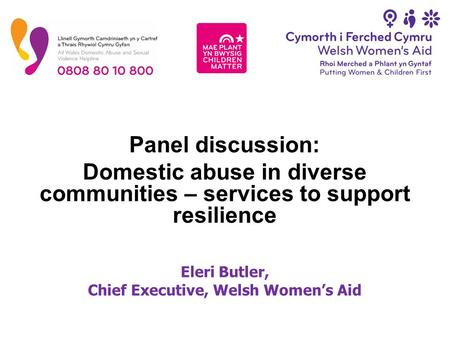 Panel discussion: Domestic abuse in diverse communities – services to support resilience Eleri Butler, Chief Executive, Welsh Women's Aid.