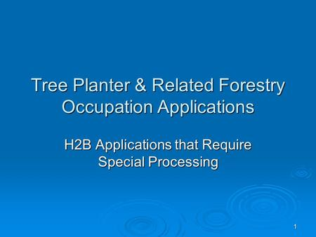 1 Tree Planter & Related Forestry Occupation Applications H2B Applications that Require Special Processing.