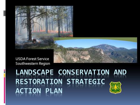 USDA Forest Service Southwestern Region. Overview  Why Landscapes?  Other Landscape Efforts  Strategic Action Plan Summary  Region-wide Landscape.