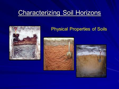 Characterizing Soil Horizons Physical Properties of Soils.