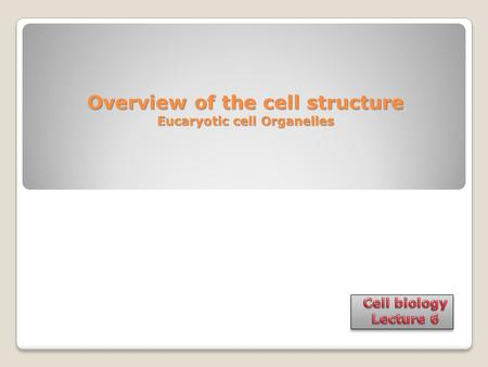 Overview of the cell structure Eucaryotic cell Organelles.