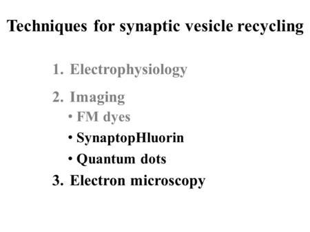 Techniques for synaptic vesicle recycling 1.Electrophysiology 2.Imaging 3.Electron microscopy FM dyes SynaptopHluorin Quantum dots.