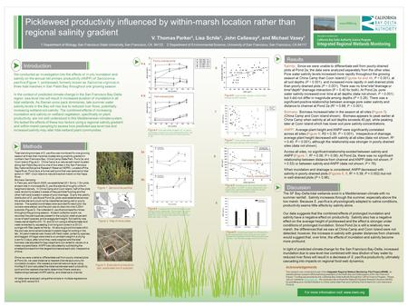 Pickleweed productivity influenced by within-marsh location rather than regional salinity gradient Results We conducted an investigation into the effects.