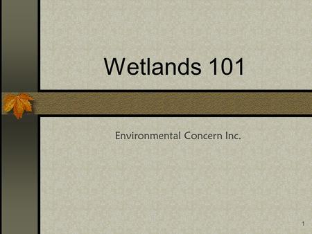 1 Wetlands 101 Environmental Concern Inc.. 2 Introduction This course is designed to prepare you to successfully complete the POW! Planning of Wetlands.