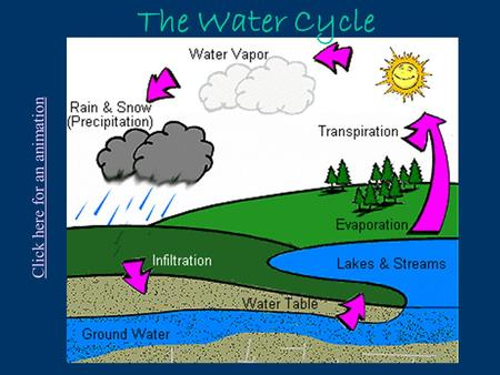 The Water Cycle Click here for an animation Increase in runoff with urbanization Decrease in infiltration.