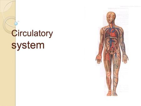 Circulatory system. Plan of the lesson : Parts of the circulatory system. Heart, its work. Two circuits of the system. The blood journey. Functions of.