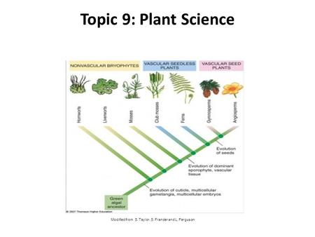 Topic 9: Plant Science Modified from S. Taylor, S. Frander and L. Ferguson.