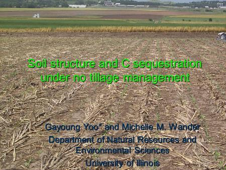 Soil structure and C sequestration under no tillage management Gayoung Yoo* and Michelle M. Wander Department of Natural Resources and Environmental Sciences.