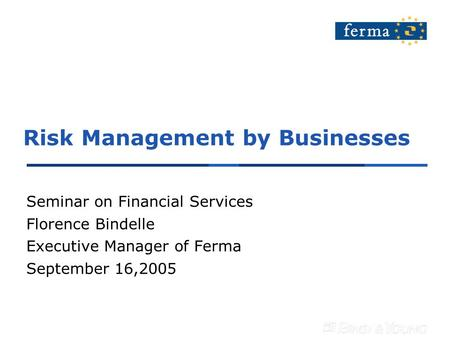 Risk Management by Businesses Seminar on Financial Services Florence Bindelle Executive Manager of Ferma September 16,2005.