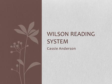 Cassie Anderson WILSON READING SYSTEM. Background Barbra A. Wilson Special Education teacher Chairperson for I.E.P. meetings Noticed special ed. students.