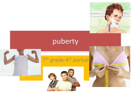 Puberty 7 th grade-4 th partial. Puberty : process of physical changes by which a child's body matures into an adult body capable of sexual reproduction.