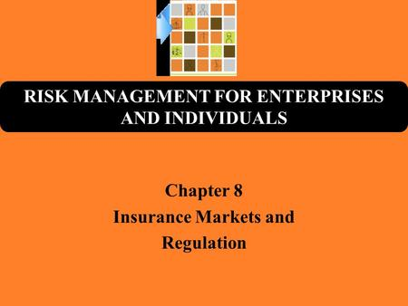 RISK MANAGEMENT FOR ENTERPRISES AND INDIVIDUALS Chapter 8 Insurance Markets and Regulation.