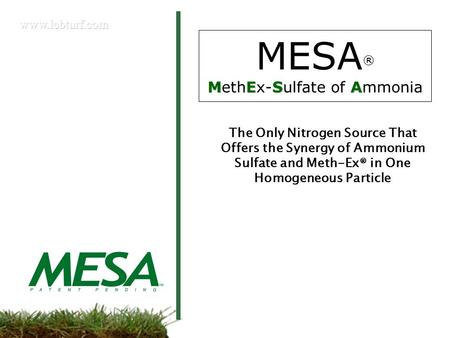 MESA MESA ® MethEx-Sulfate of Ammonia The Only Nitrogen Source That Offers the Synergy of Ammonium Sulfate and Meth-Ex® in One Homogeneous Particle.