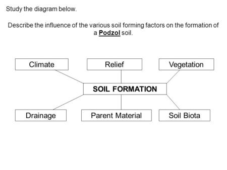 Climate Relief Vegetation SOIL FORMATION Drainage Parent Material