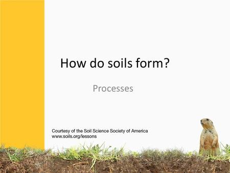 How do soils form? Processes. 4 basic processes in the soil ADDITIONS LOSSES TRANSLOCATIONS TRANSFORMATIONS (MOVEMENT WITHIN THE SOIL) (ONE COMPONENT.