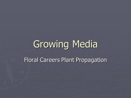 Floral Careers Plant Propagation