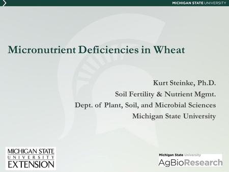 Micronutrient Deficiencies in Wheat Kurt Steinke, Ph.D. Soil Fertility & Nutrient Mgmt. Dept. of Plant, Soil, and Microbial Sciences Michigan State University.